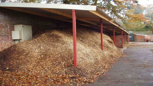 Biomass2.jpg