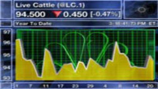 080221 Live Cattle.jpg