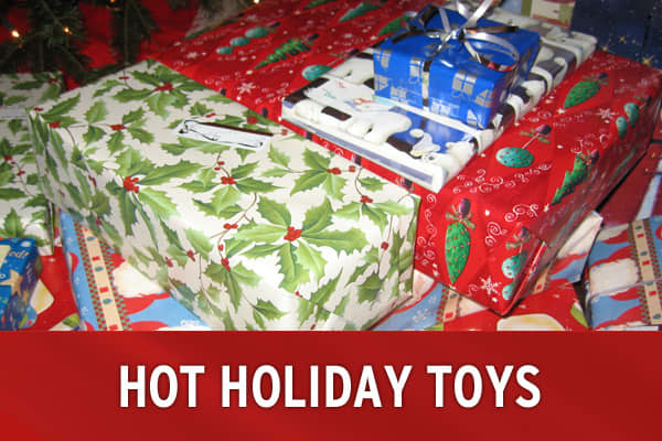 Parents get ready. The holiday toy season is on the way. With no mega-toy this year, manufacturers are hoping to win over kids with a variety of choices. Toys expected to be bestsellers this year range from cupcake makers to the latest LEGO sets to a large, moving dinosaur. Take a look at the 12 toys likely to be top sellers this year, according to Toy Wishes Magazine.»