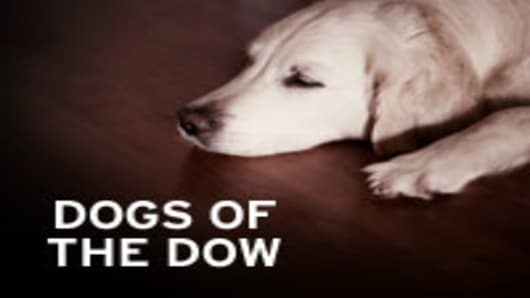 dogs_ofthe_dow.jpg