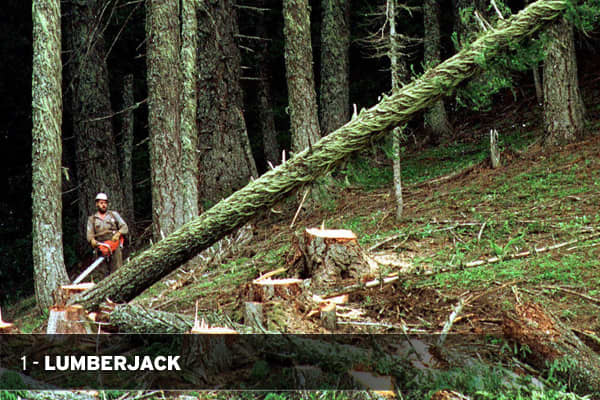That's right, being a Lumberjack is the worst job in America, based upon the study by . These workers spend all their time outdoors, in poor weather, and often in isolated areas. It's also the third most deadly  occupation with a fatality rate of 82.1 per 100,000 jobs per year. Long hours, a high -stress environment, strenuous work and low pay - often starting at minimum wage, with a median hourly wage at $13.80 - all contribute to make this the #1 worst job in the country. For more information