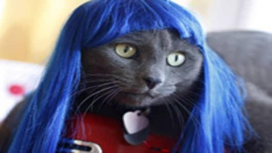 Kitty Wig