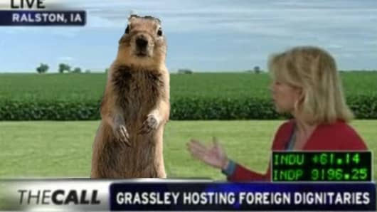 Crasher Squirrel with Jane Wells