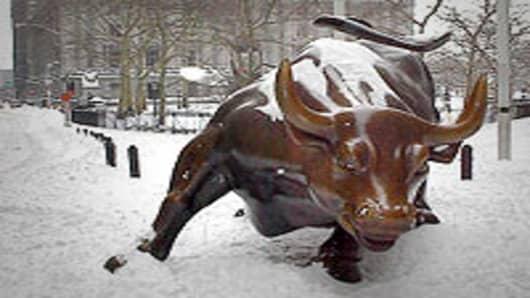 wall_street_bull_snow_200.jpg