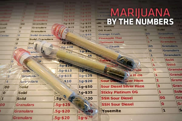 SS_marijuana_by_numbers_cover.jpg