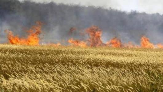russia_fires.jpg