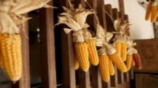 corn_200.jpg