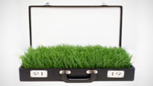 grass_briefcase_200.jpg