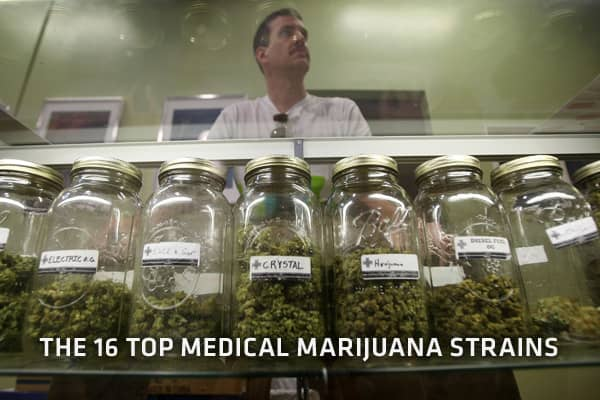 "Watch the premiere of ""Marijuana USA"" Wednesday night at 9pm, 10pm, 12am and 1am ET on CNBC.   Photo: Getty Images"