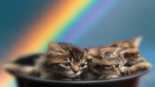kittens_rainbow_200.jpg