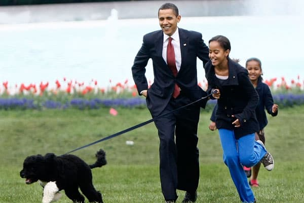 "Referred to as ""the first dog,"" Portuguese Water Dog Bo was gifted to the Obama family by the late Senator Ted Kennedy in April 2009.Bo belongs to a hypoallergenic breed, which makes him more compatible with Obama's eldest daughter Malia's allergies. The President had promised his daughters a dog during his election campaign. Bo is valued at $1,600, according to the President's financial disclosure forms last year.Four children's books featuring Bo have already been published and in December las"