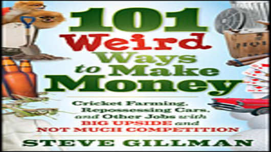 """101 Weird  Ways to Make Money"" by Steve Gillman"