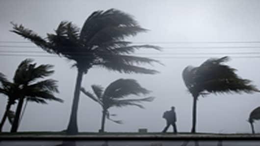 Winds from Hurricane Irene bend trees, New Providence Island, Bahamas.
