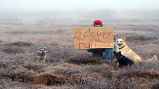 "Diane McEachern sits with her dogs on the tundra near Bethel, Alaska. McEachern wanted to participate in the Occupy Wall Street protests so she gathered her dogs, bundled up and went out to the tundra with a homemade sign that read ""Occupy the Tundra."""