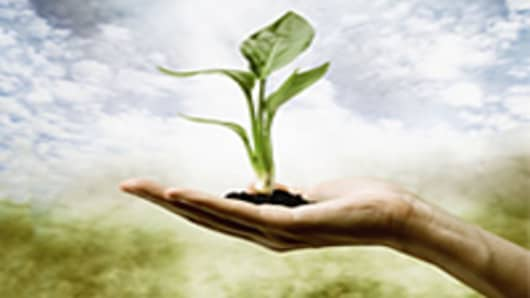plant-in-hand-200.jpg