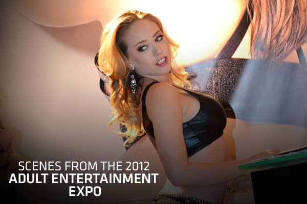 Each January, Adult Video News, the trade publication of the adult entertainment industry, holds the AVN Adult Entertainment Expo in Las Vegas.The event (held Jan. 18-21 this year) features appearances by well-known actors in the industry, as well as new products and companies vying for a piece of the $14 billion adult industry. The expo includes a fan show, a trade show, and an adult novelty expo, and culminates with the AVN Awards held on Jan. 21. Fans unable to visit the event are also given