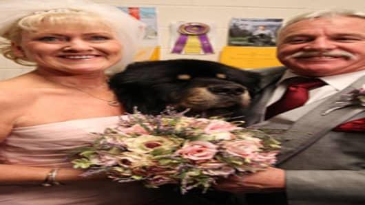 Westminster Kennel Club wedding