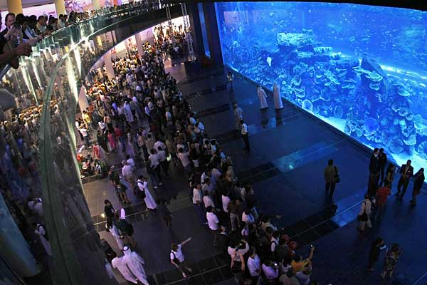 Attraction: Dubai Aquarium & Underwater ZooLocation: Dubai, United Arab EmiratesOpen since 2008, the Dubai Mall is home to 1,200 stores and various entertainment options, but it's most dramatic draw is its 2.6 million gallon fish tank. The which the mall bills as the world's largest suspended aquarium, is on the ground floor and is home to more than 33,000 aquatic animals — including the largest collection anywhere of Sand Tiger sharks.Visitors who are brave enough can get up close and personal
