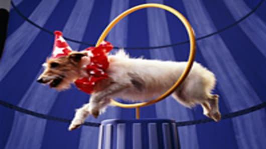 dog-circus-hoop-200.jpg