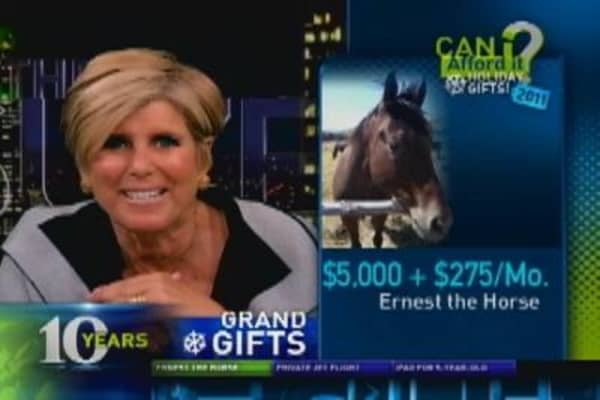 Can I Afford a $5,000 Horse?