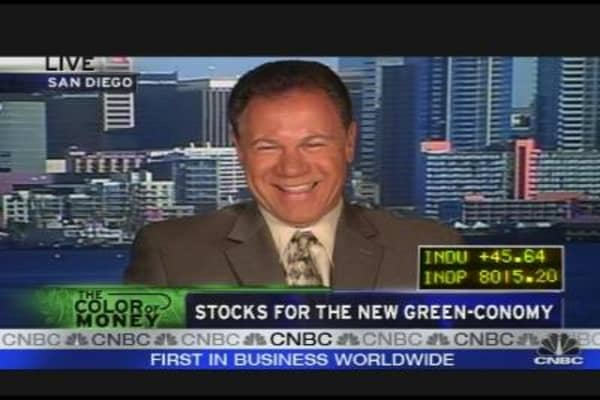 Stocks for the New Green Economy