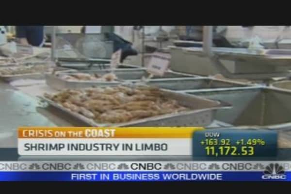 Shrimp Industry in Limbo