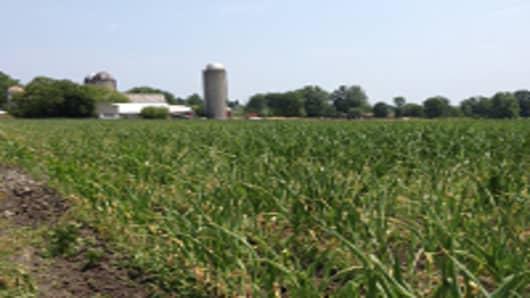 Wisconsin-farm-horiz-200.jpg