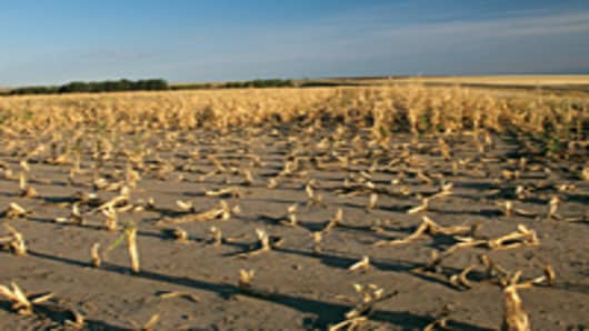Crop Failure due to Drought