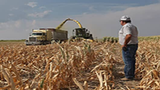 farmer-corn-field-200.jpg