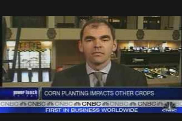 Corn Becomes a Sought After Commodity