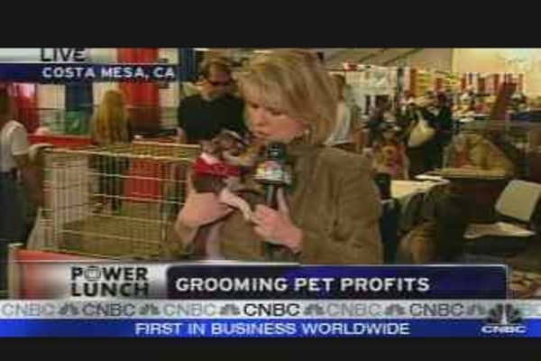 Big Business of Pets