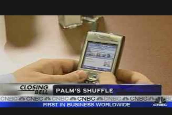 Palm's Private Equity Deal