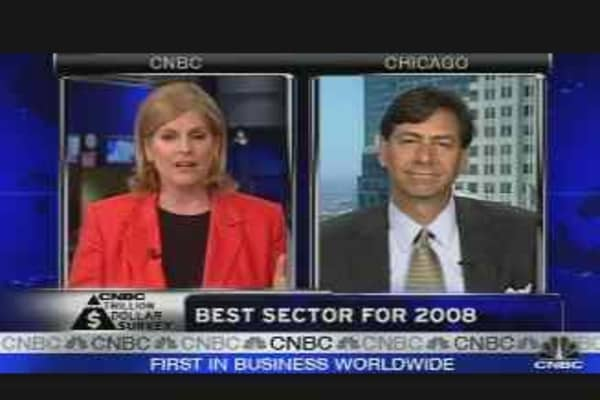 Best Sector for 2008