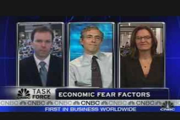 Economic Fear Factors