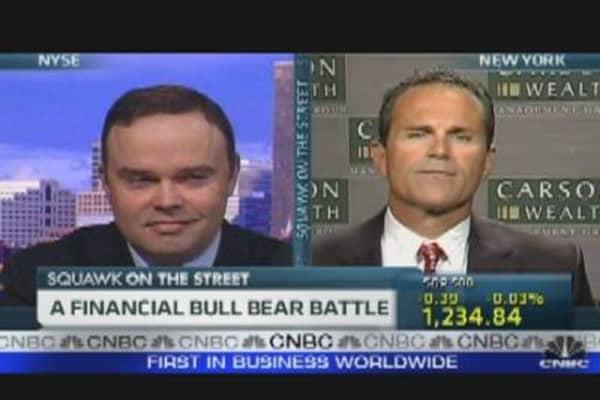 A Financial Bull Bear Battle