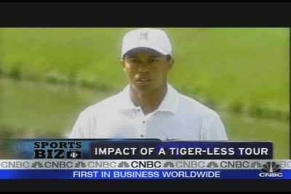 Impact of a Tiger-Less Tour