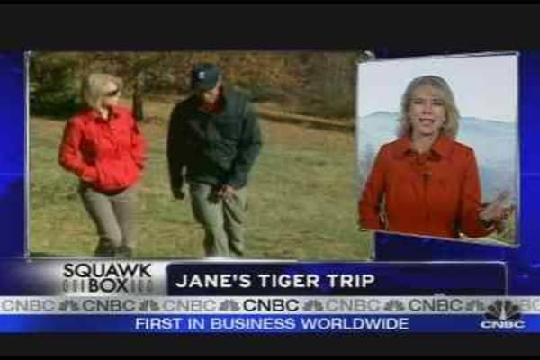 Jane's Tiger Trip