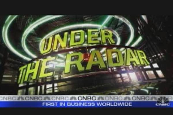 Under the Radar: Rare Earths
