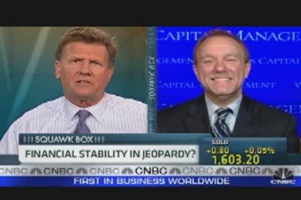 Financial Stability in Jeopardy?