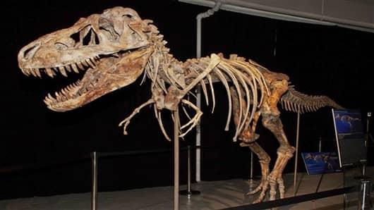 dinosaur dispute-1767283258_v2.jpg