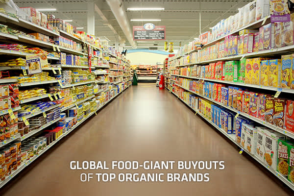 The organic foods business has gone so far beyond wheat sprouts and fresh pressed juices that the top company in the sector,  is close to breaking into the top half of the Fortune 500 rankings of America's largest companies.