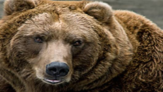 Bad Time for Bears Despite Fiscal Cliff: Money Manager