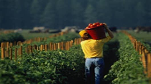 Seeking a New Startup Idea? Try Farming