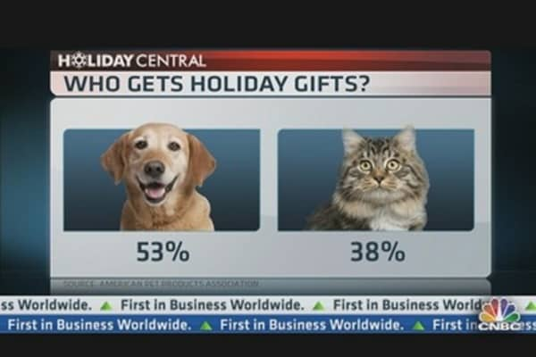 Holiday Shopping For Your Pet?