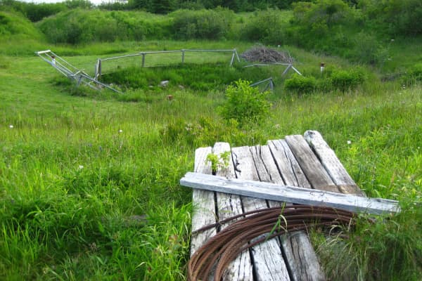 Sought After Treasures- Oak Island Money Pit