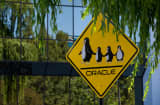 A pedestrian crossing sign is seen at the Oracle Corp. campus in Redwood City, California, U.S.