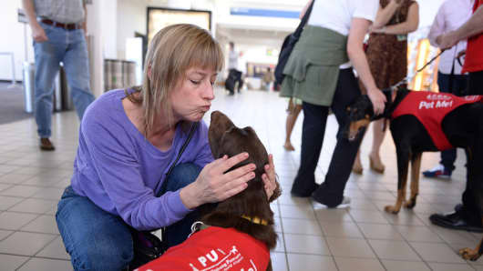 "Laura Larsen of West Hollywood kisses ""CC"" New program at LAX called PUP (Pets Unstressing People) uses certified dogs to walk the terminals with their volunteer owners to greet passengers and help ease the tensions of modern airline traveling."