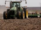 Corn Prices Tumble on Record Crop Planting Pace