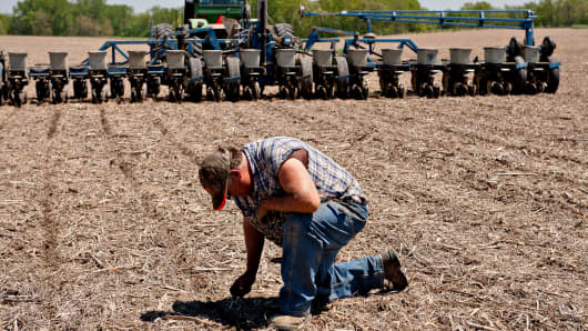 A farmer verifies that his equipment is dropping seeds at the appropriate depth as he plants a cornfield outside Henry, Ill.