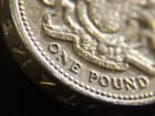 Pound coin